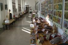 Centro di Studio e Documentazione sul Castagno